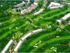 Golf_aerial600 Oakmont